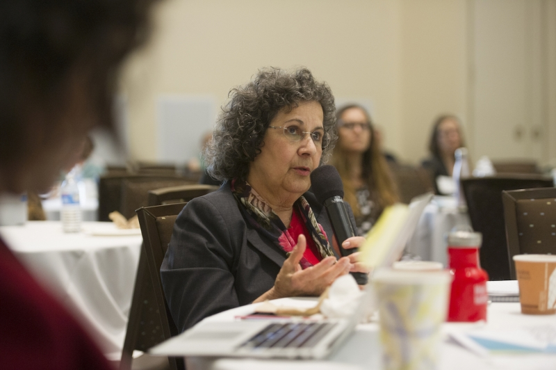 Suad Joseph, distinguished professor of anthropology and gender, sexuality, and women's studies at UC Davis