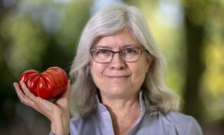 Anne Britt, a professor in the UC Davis Department of Plant Biology