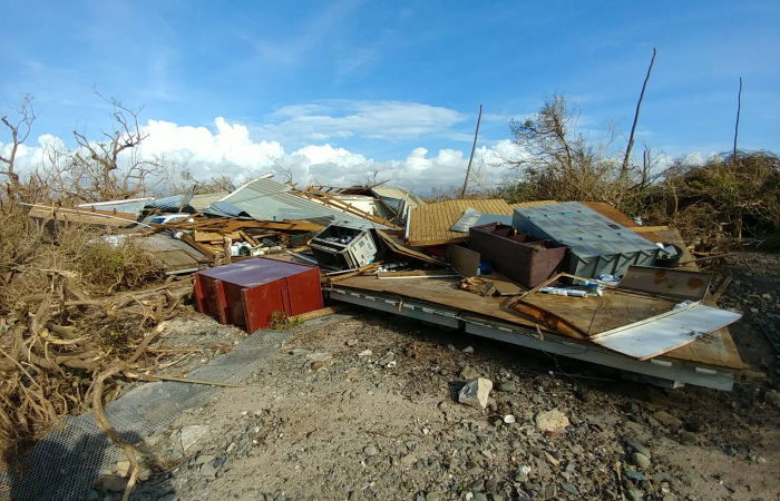 Destruction on Cayo Santiago