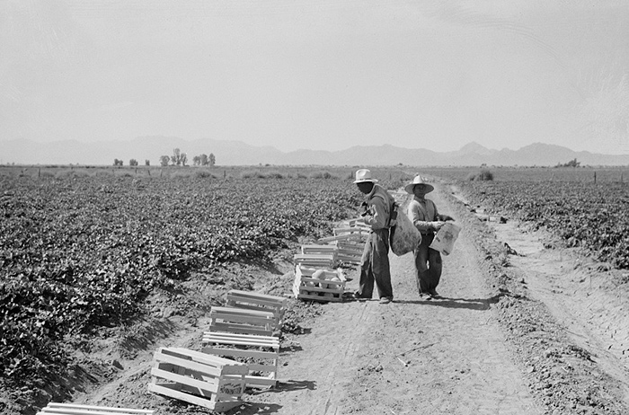 Mexicans Imperial Valley 1937
