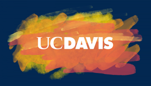 UC Davis Sets Record With $941 Million in Research Funding