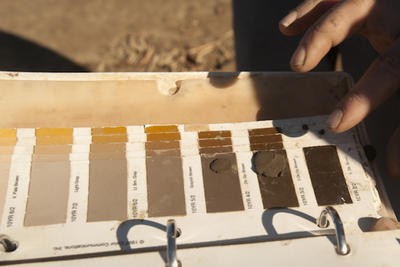 Soil Color Swatches