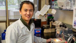 Glenn Yiu, an associate professor in the Department of Ophthalmology and Vision Science.