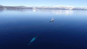 The Science of Lake Tahoe: Long-term monitoring of one of the world's most famous lakes